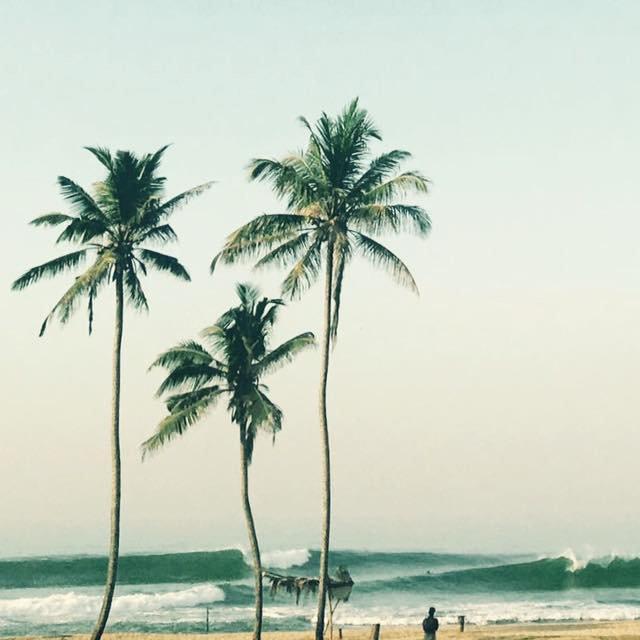 Gurubebila, Coconut Point